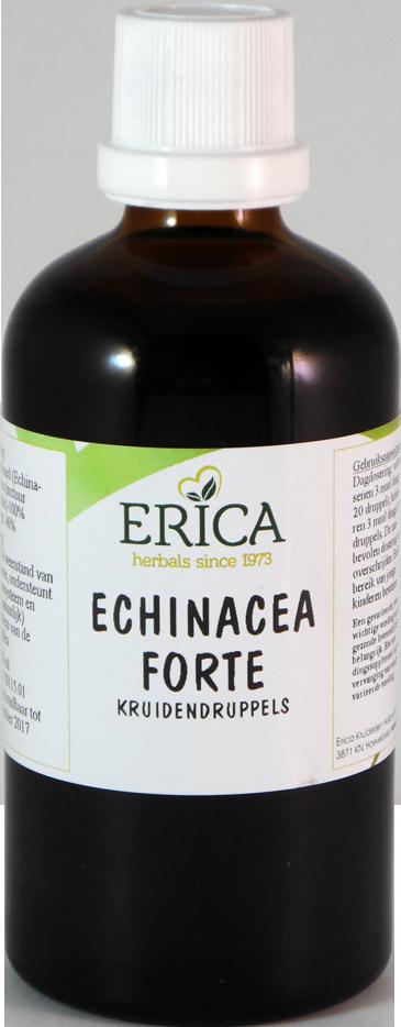 ECHINACEA FORTE DRUPPELS 100 ML