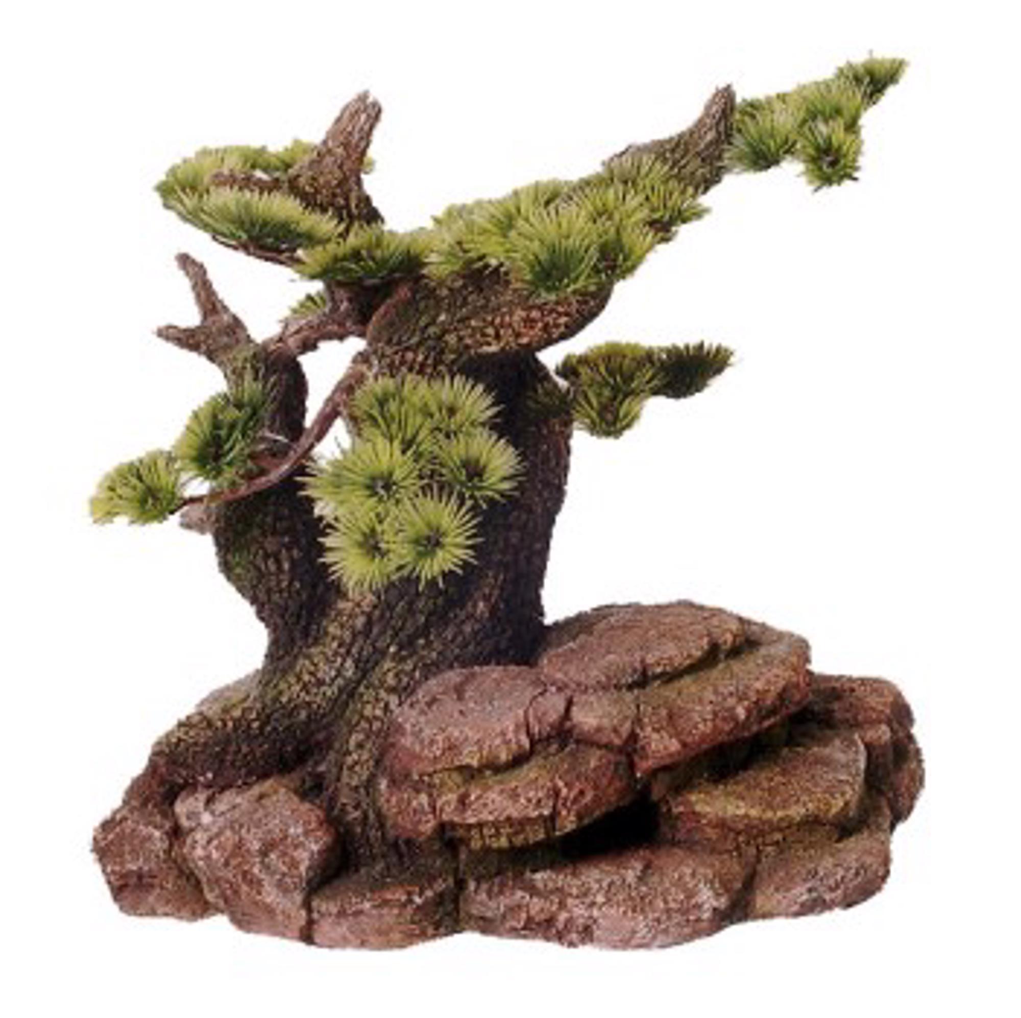 Bonsai Boom Groot Op Rots 24 Cm Dier All In
