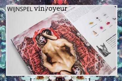 Vin Voyeur Wijnspel incl. 6 bijbehorende wijnen